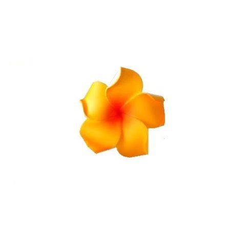 Hawaii rózsa  7 cm- narancs szín